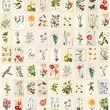 PiP III Behang Eijffinger Botanical Paper Wallpower 341086