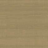 Arte Paleo Latus 50515 Behang
