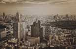 Dutch Wallcoverings City Love CL65C