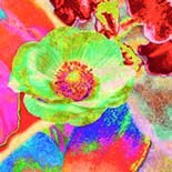 Behang Dutch Wallcoverings Colour & life 46076