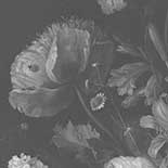 Behang Dutch Wallcoverings KEK Big Black en White Flowers I WP.342