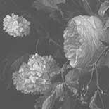 Behang Dutch Wallcoverings KEK Big Black en White Flowers II WP.343