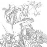 Behang Dutch Wallcoverings KEK Engraved Flowers I WP.335