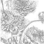 Behang Dutch Wallcoverings KEK Engraved Flowers IV WP.330