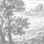 Behang Dutch Wallcoverings KEK Engraved Landscape IV WP.315