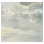 Behang Dutch Wallcoverings KEK Golden Age Clouds I WP.216