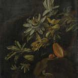 Behang Dutch Wallcoverings Painted Memories 8007