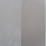 Behang Eijffinger Carte Blanche 302053
