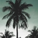 Behang Esta Home Jungle Fever 158899