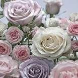 Behang Komar Flowers & Textures Floraison