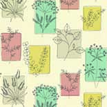 Behang Little Greene 20th Century Papers Herbes 1955 Cocktail