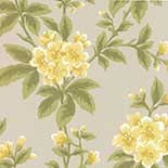 Behang Little Greene London Wallpapers III Grosvenor Street 1830 Primrose