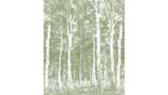 MrPerswall Wallprints DM2163 behang