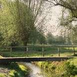 Behang Noordwand Holland 1381-250 Slenaken