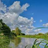 Behang Noordwand Holland 3288-250 Kromme Rijn