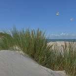 Behang Noordwand Holland 5598-250 Zeepanorama