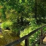 Behang Noordwand Holland 8326-250 Hemmen Park