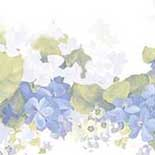 Behang Noordwand Pretty Prints CO77196DC
