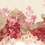 Behang Noordwand Pretty Prints CO77197DC