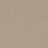Behang Rasch Cosmopolitan 576030