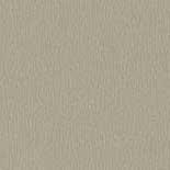 Behang Rasch Gentle Elegance 724080