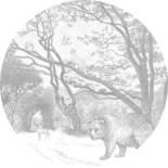 Esta Home Forest Friends 159070 Zelfklevende Behangcirkel