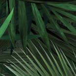 KEK Amsterdam Bold Botanics WP-501 Palm Behang