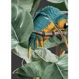 KEK Amsterdam Bold Botanics WP-579 Birds Behang