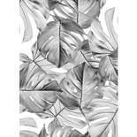KEK Amsterdam Bold Botanics WP-583 Monstera Behang