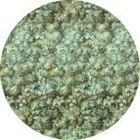 Komar Dots Greenery D1-024 Zelfklevende Behangcirkel