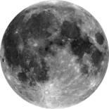 Komar Dots Moon D1-019 Zelfklevende Behangcirkel