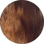 Komar Dots Windlines Color D1-007 Zelfklevende Behangcirkel